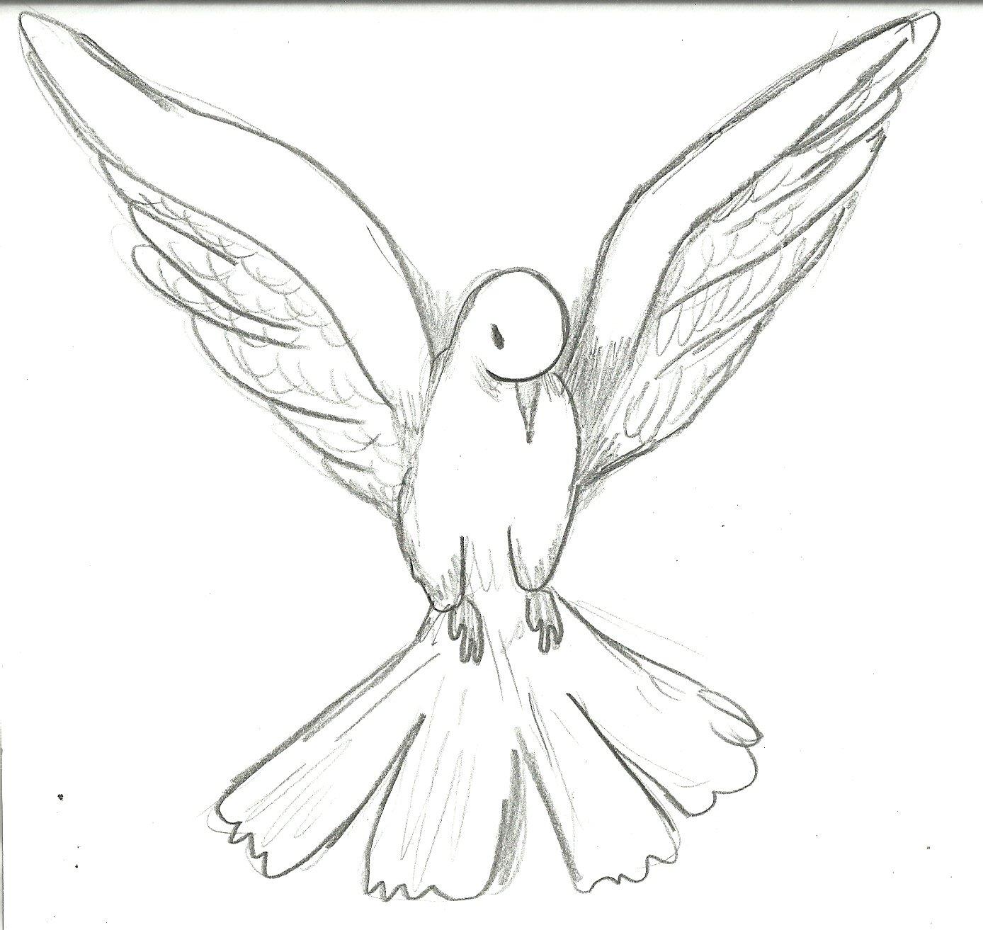 Desenhos De Pombas Para Colorir!