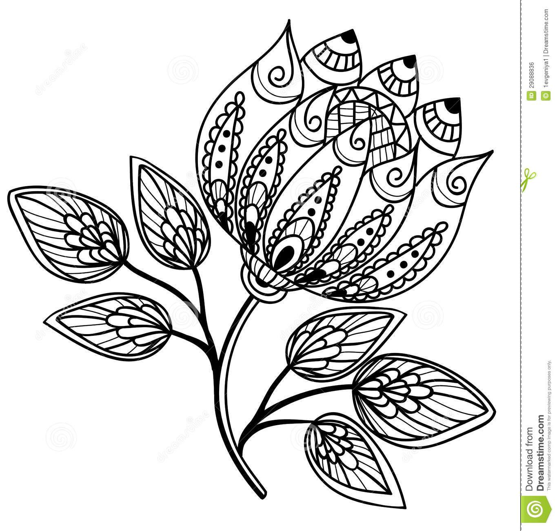 Flor Preto E Branco Bonita, Desenho Da Mão Imagem De Stock Royalty