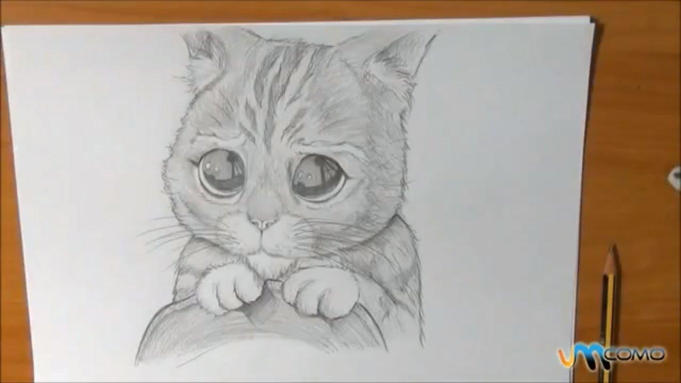 Aprenda A Desenhar O Gato Das Botas Do Shrek