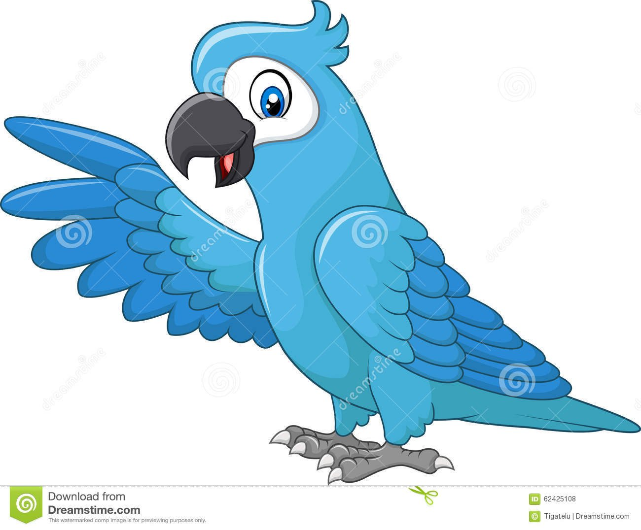 Apresentação Azul Engraçada Da Arara Dos Desenhos Animados Isolada