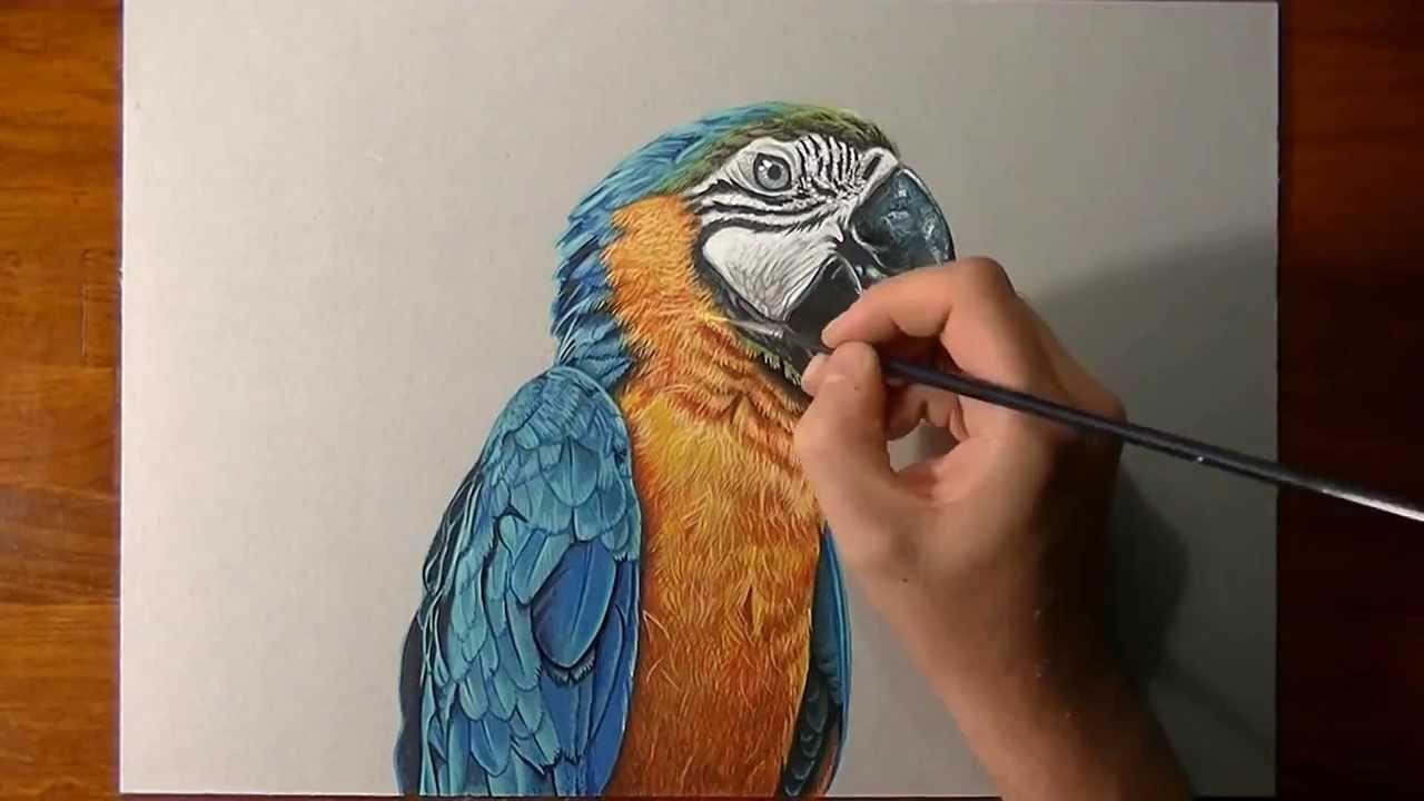 Artista Italiano Cria Desenhos Realistas Capazes De Confundir O