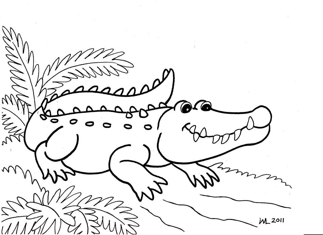 Crocodilo 0007 Para Imprimir E Colorir
