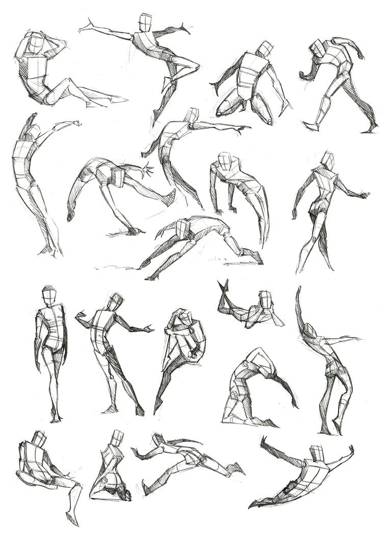 Desenhe Tudo  Corpo Humano
