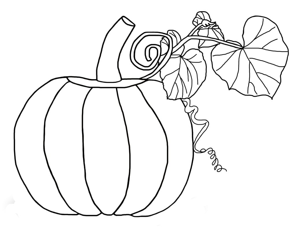 Desenho De Abóbora Bonita Para Colorir