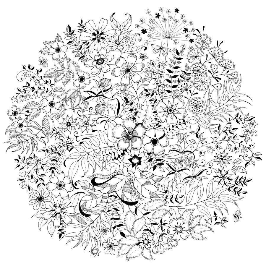 Desenho De Flores E Folhas Para Adultos Para Colorir