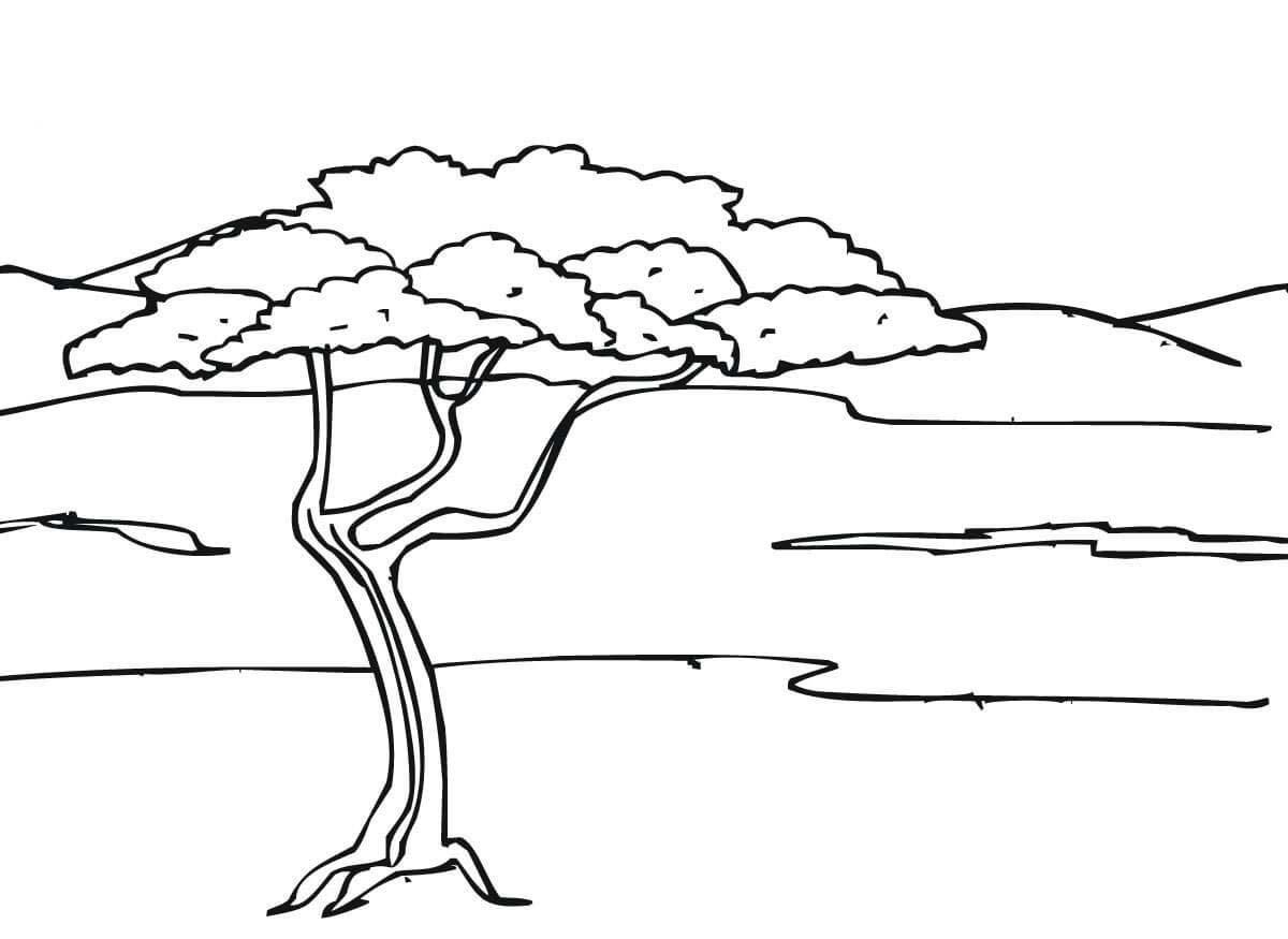 Desenho De Paisagem Da Savana Africana Para Colorir
