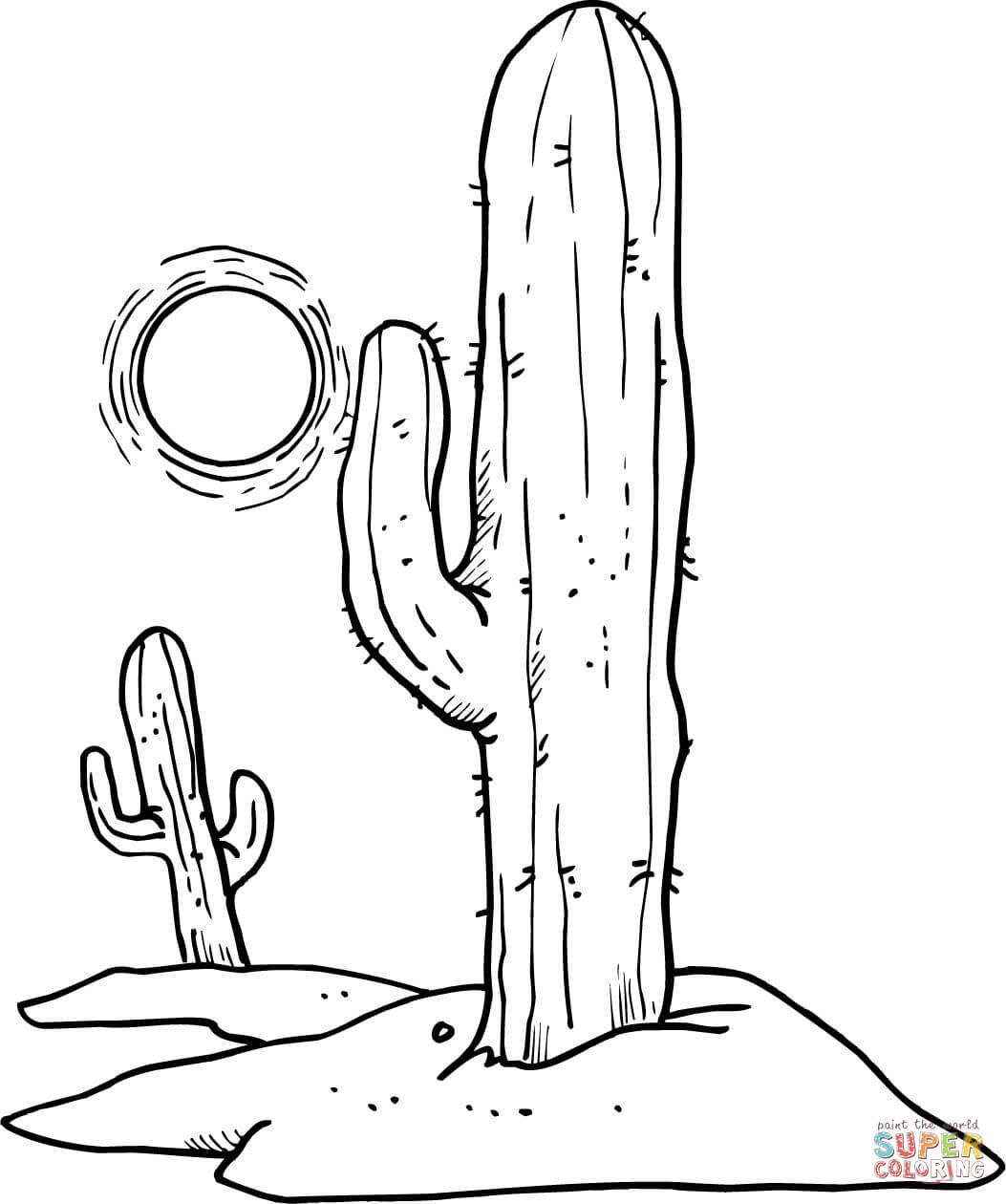 Desenho De Sol Sobre Cactos Do Deserto Para Colorir