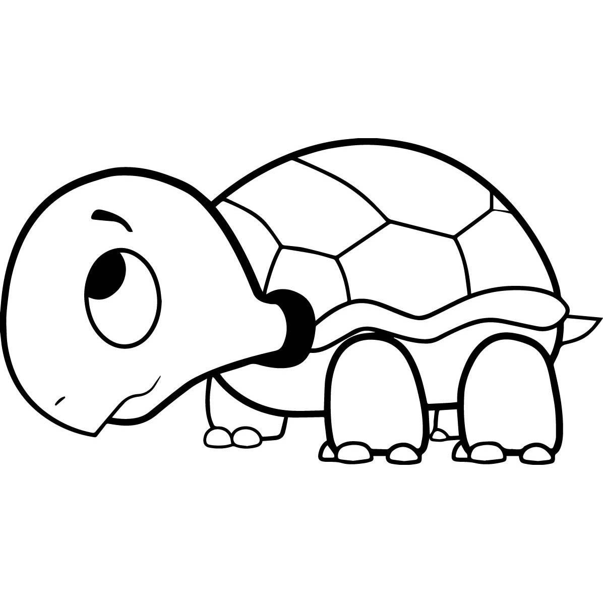 Desenho De Tartaruga Triste Para Colorir