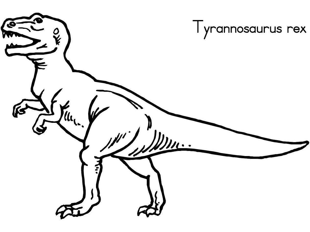 Desenho Dinossauro Para Colorir