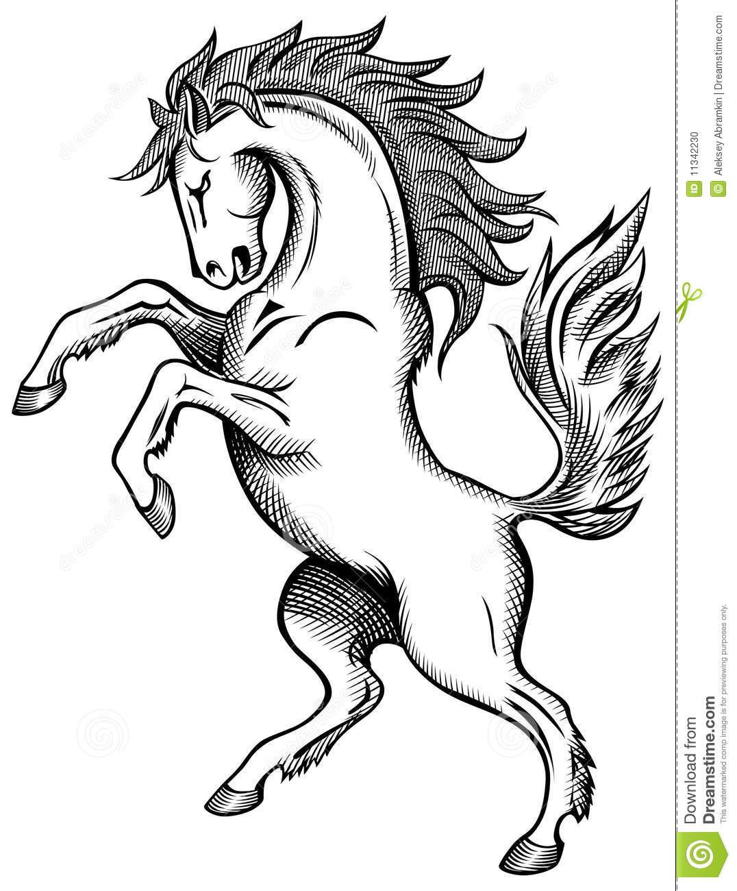 Desenho Do Cavalo Foto De Stock