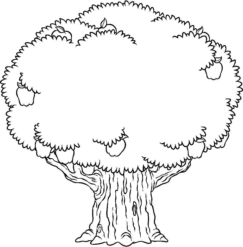 Desenhos De árvores Para Colorir E Imprimir