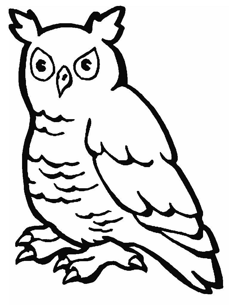 Desenhos De Animais Colorir Pintar Imprimir