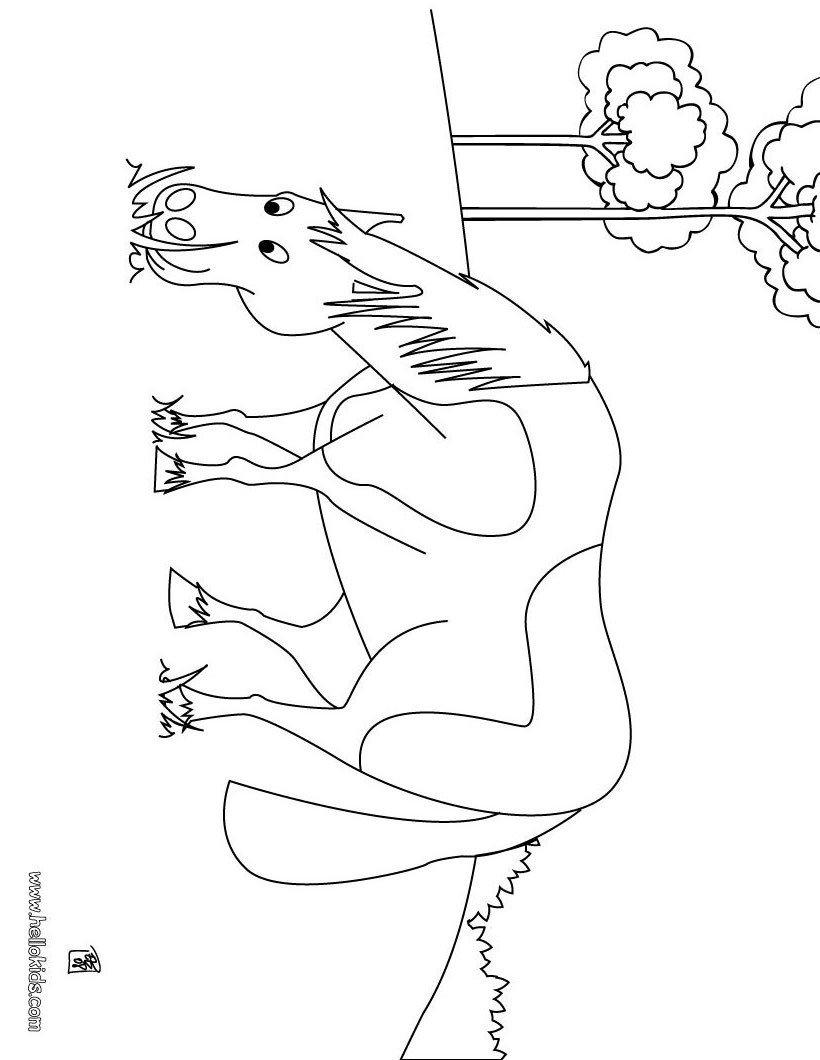 Desenhos De Cavalos Para Colorir