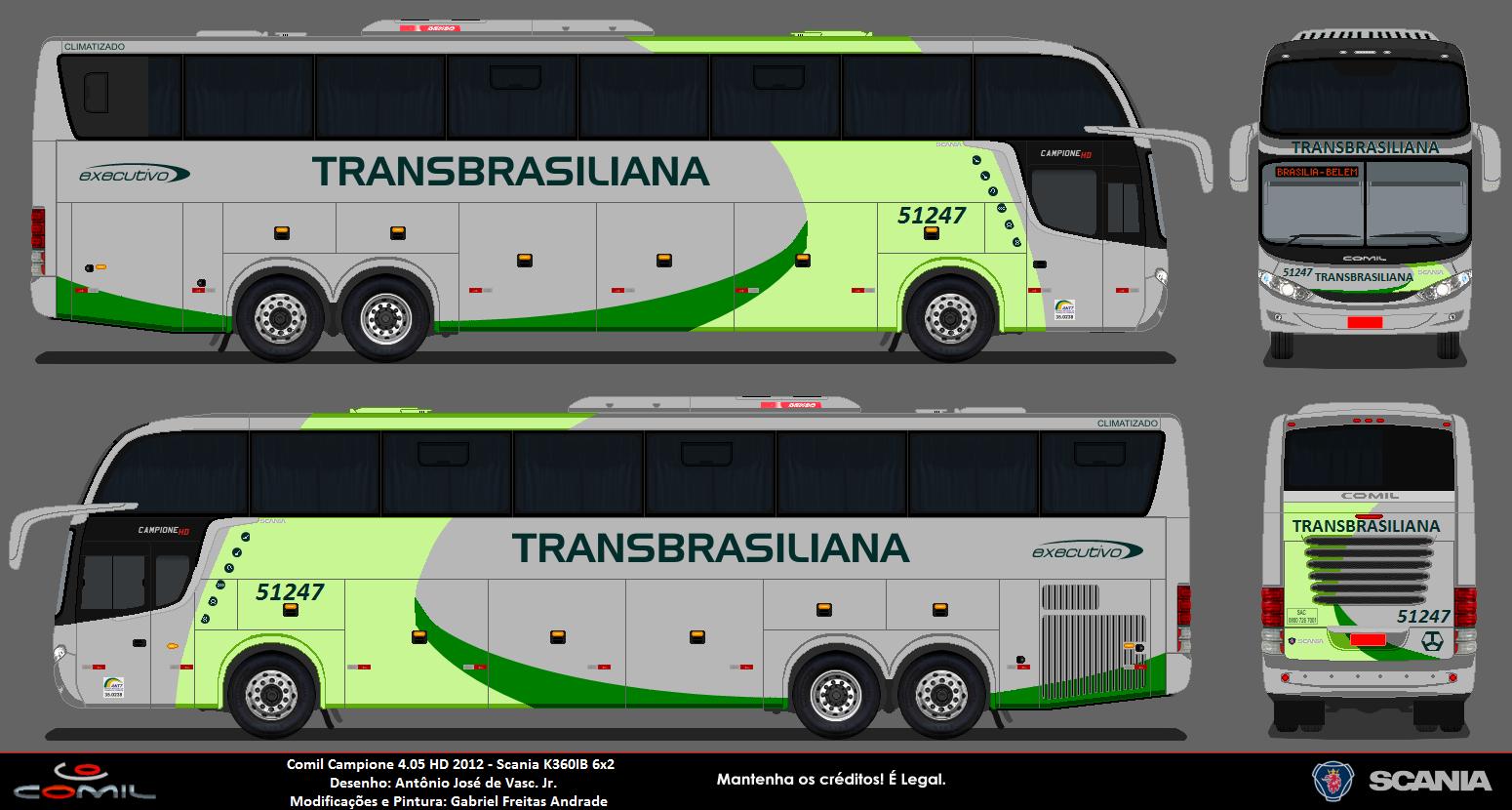 Desenhos De Onibus Rodoviarios De Todo O Brasil  Transbrasiliana