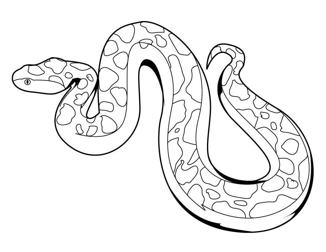 Desenhos De Répteis Para Colorir  Desenhoswiki Com