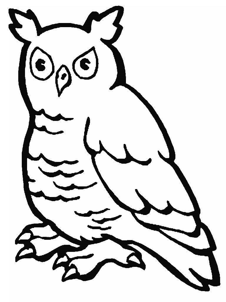 Desenhos Para Imprimir E Colorir De Animais