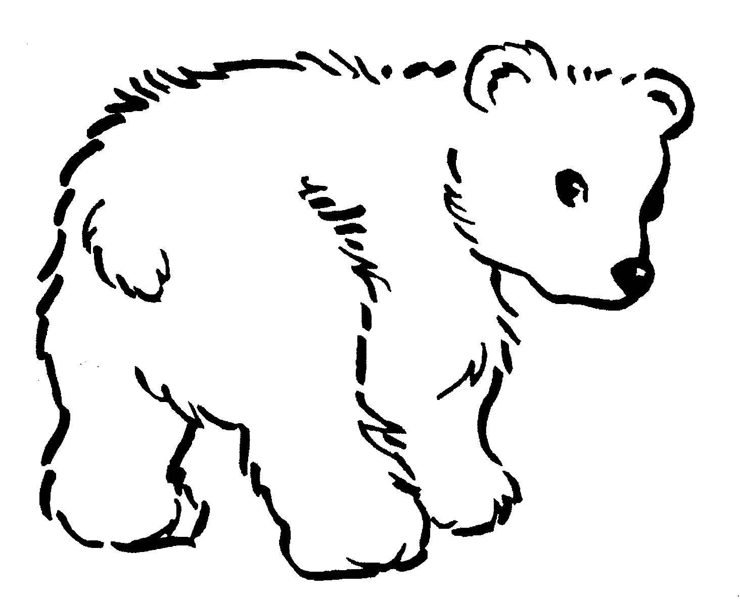 Galeria De Desenhos De Ursos  Desenhos De Ursos Para Pintar