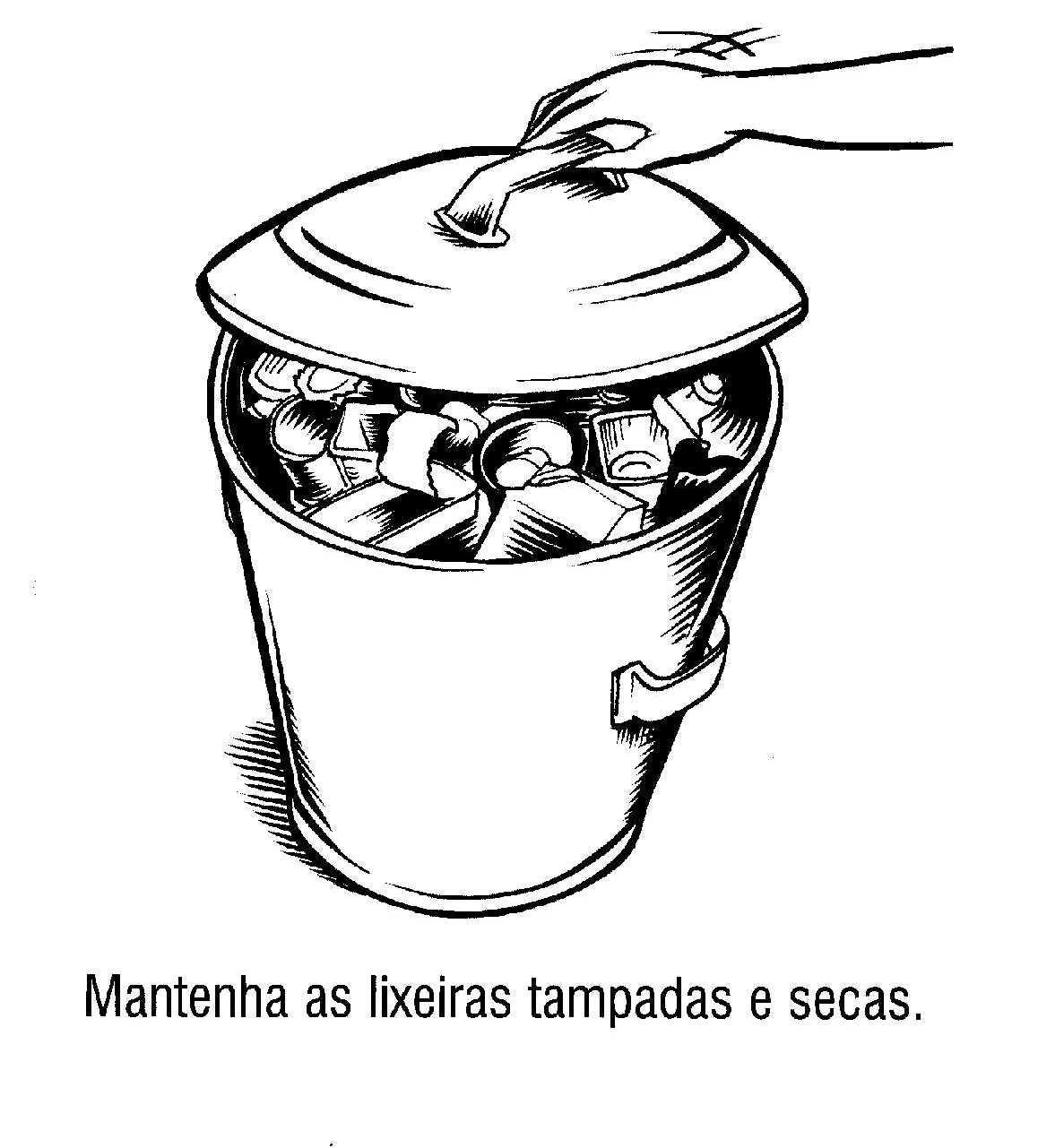Imagens Mosquito Da Dengue Para Colorir