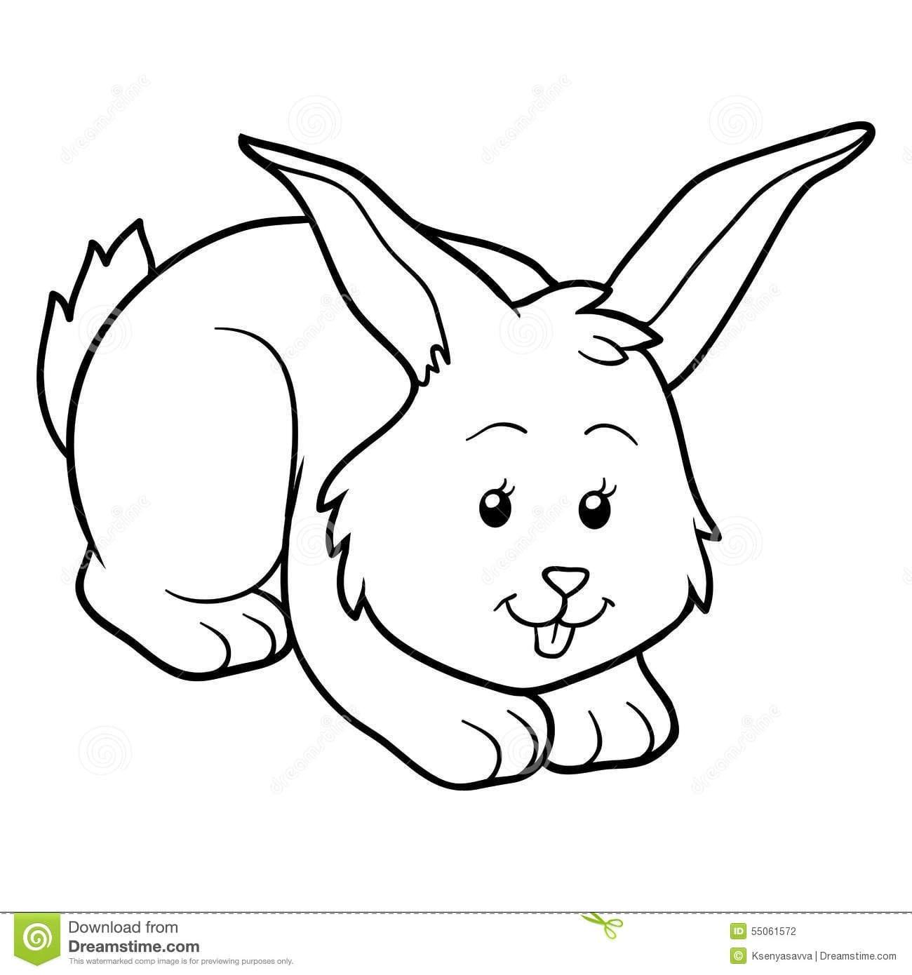 Livro Para Colorir (coelho) Ilustração Do Vetor