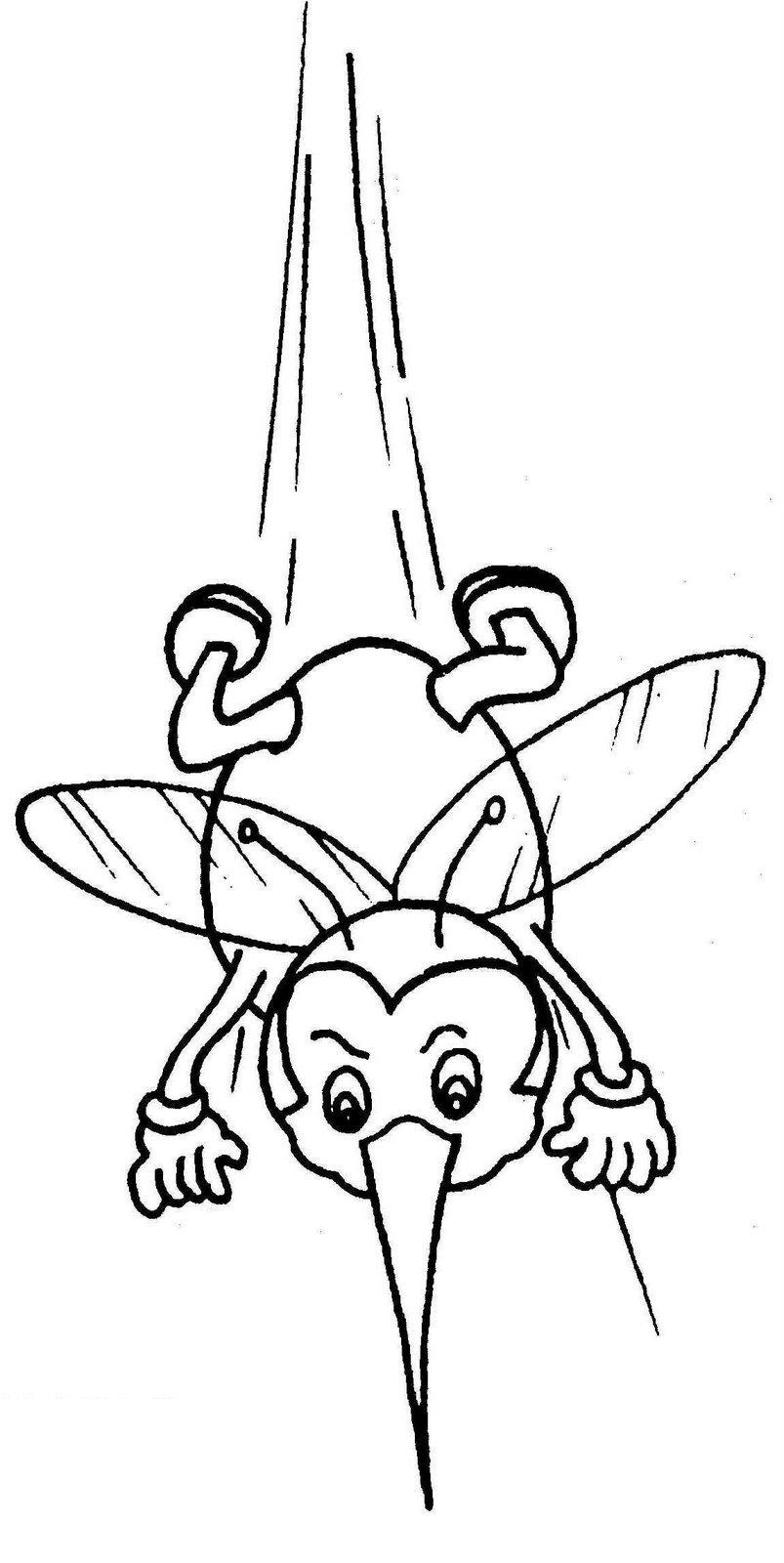Mosquito Da Dengue Sketch Coloring Page