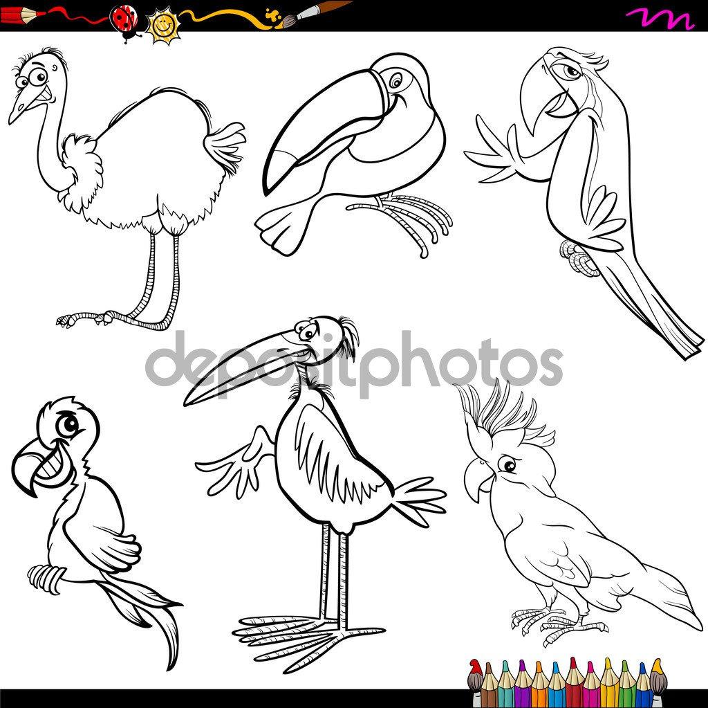 Página De Aves Dos Desenhos Animados Para Colorir — Vetor De Stock