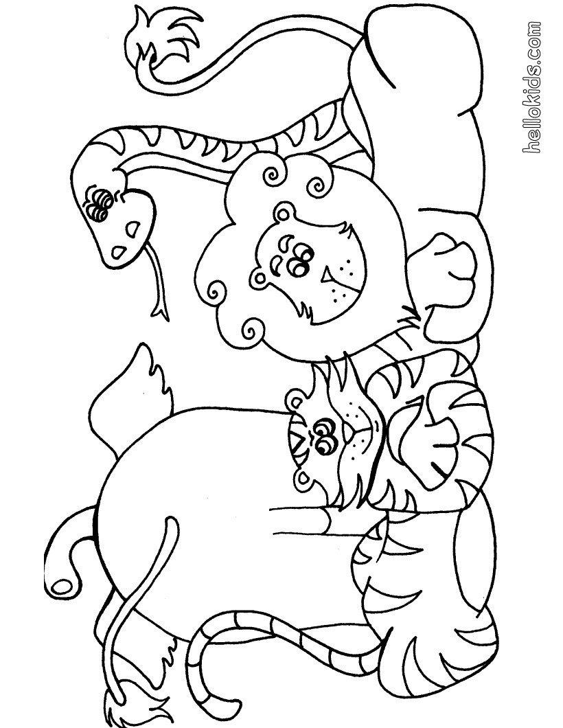Páginas Para Colorir Animais Selvagens