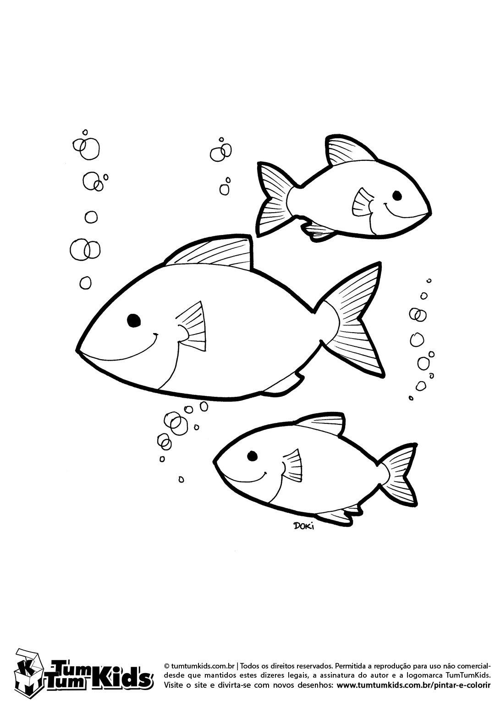 Peixes Nadando