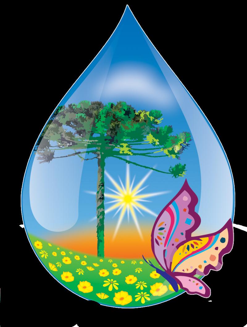 ♡ Point Das Fofurices ♡  Desenhos Da água Em Png