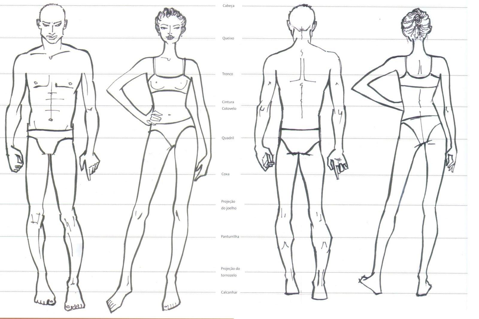 Proporções Do Corpo Humano ( Base De Desenho ) ~ Blog Do Aluno