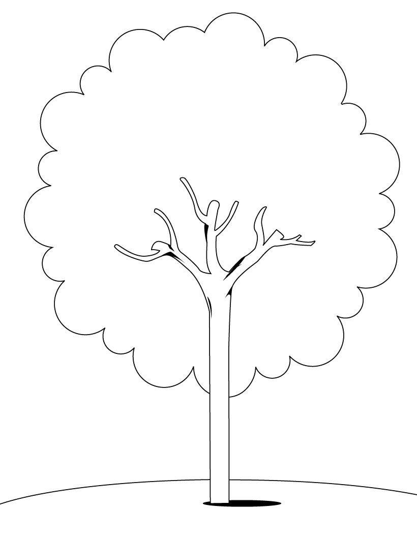 Árvore Para Colorir