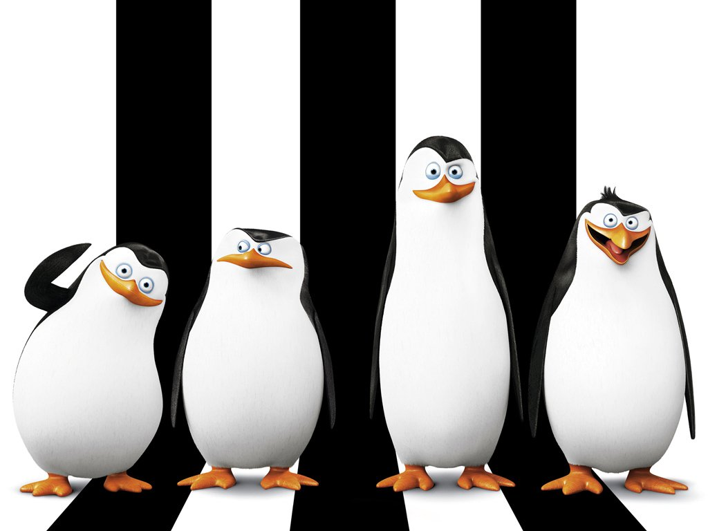 S Do Desenho Os Pinguins De Madagascar