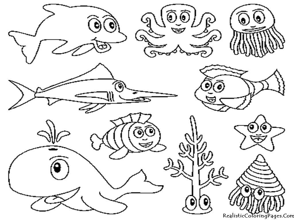 Tagged Alforreca Animais Animais Do Mar Para Colorir Animais Do